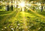 موضوع تعبير عن فصل الربيع وجماله بالافكار
