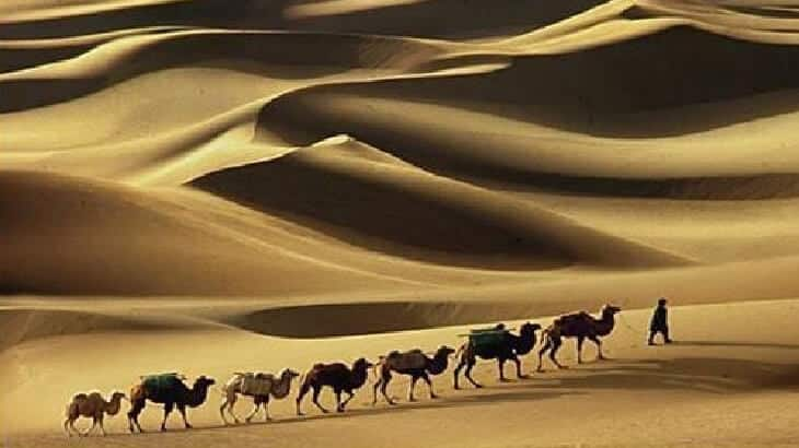 موضوع تعبير عن هجرة الرسول صلى الله عليه وسلم بالعناصر
