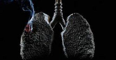 بحث عن التدخين والمخدرات جاهز للطباعة