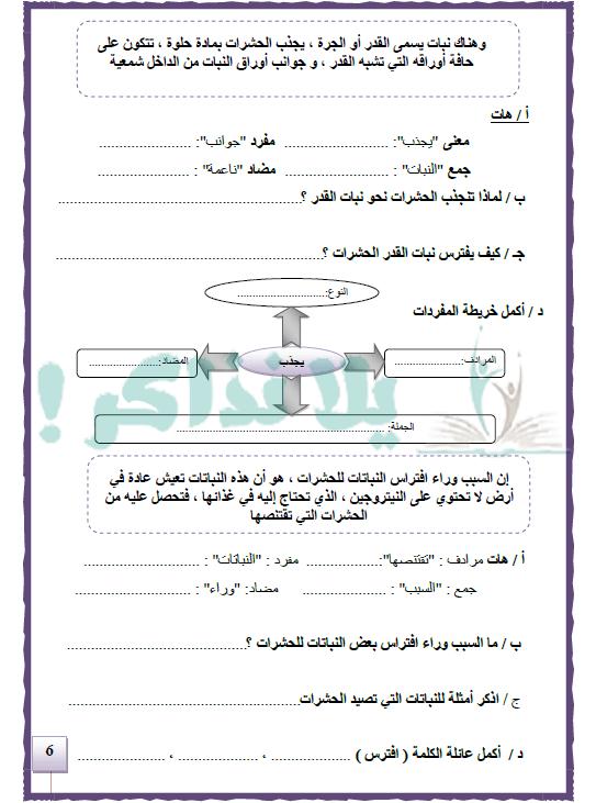 مذكرة لغة عربية للصف الرابع الإبتدائي ترم ثاني