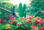 موضوع تعبير عن الحدائق والزهور بالعناصر