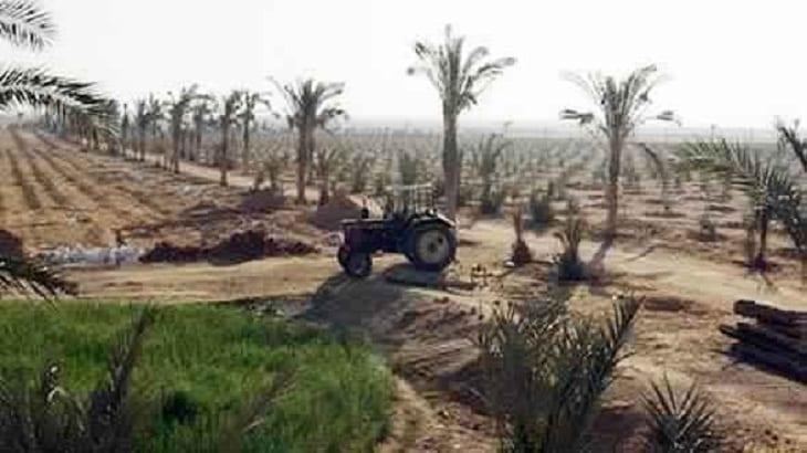 موضوع تعبير عن تعمير الصحراء بالمقدمة والخاتمة