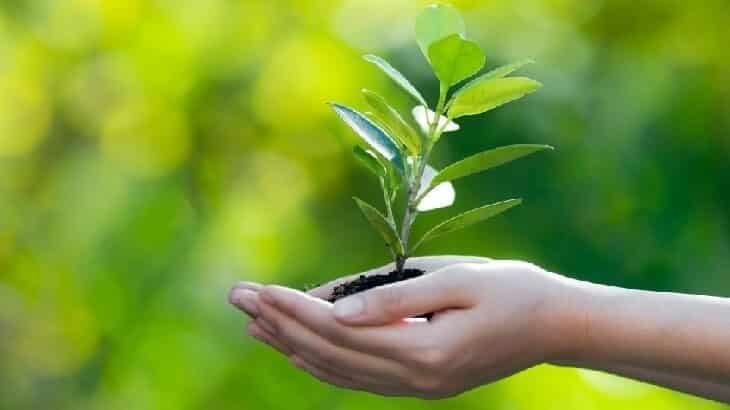 مقترحات للوصول إلى بيئة نظيفة خالية من التلوث