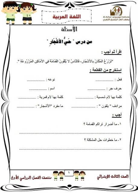 المراجعة النهائية لغة عربية للصف الثالث الابتدائي الترم الأول