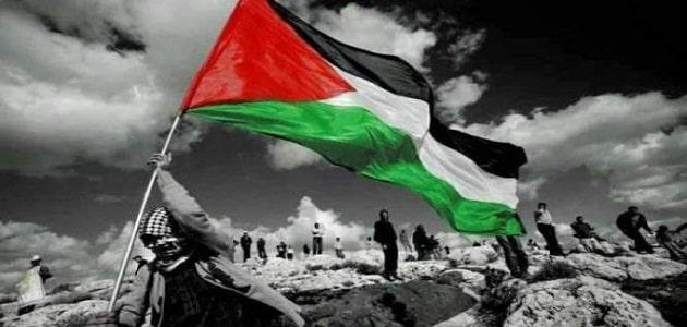بحث عن القضية الفلسطينية جاهز