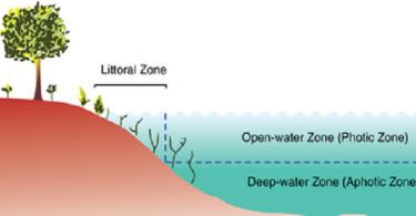 بحث عن الانظمة البيئية المائية والمناطق الحيوية