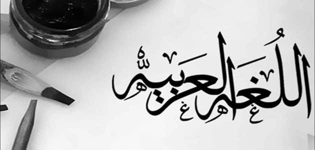 بحث عن المتممات المنصوبة في اللغة العربية