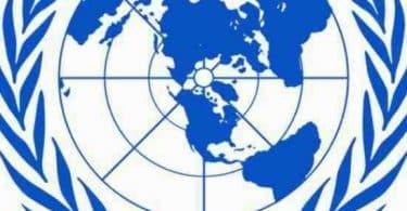 بحث حول هيئة الامم المتحدة pdf