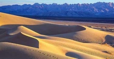 بحث عن تنمية البيئة الصحراوية فى مصر doc