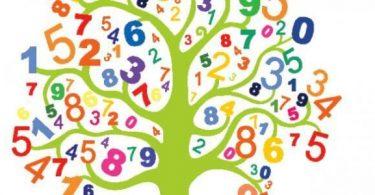 بحث رياضيات اول ثانوي مقررات