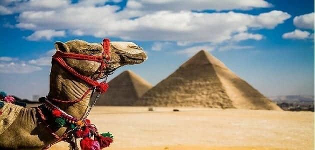 موضوع تعبير عن السياحة في مصر للصف الخامس الابتدائي والخاتمة