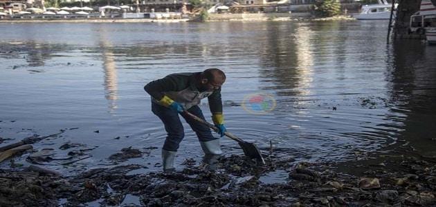 ماذا يحدث لو لم نهتم بنظافة ماء النيل